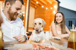 dog-friendly-restaurants